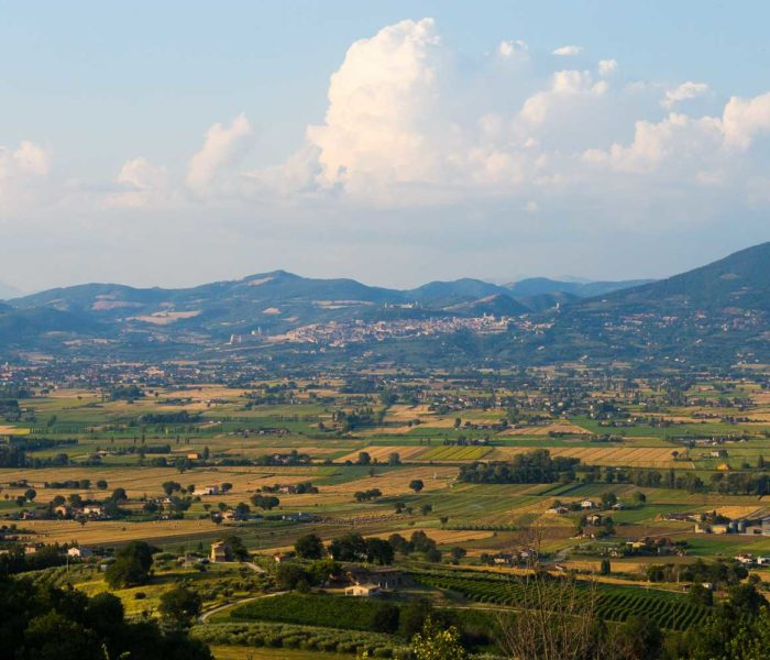 Foto Panoramiche IMG (14)
