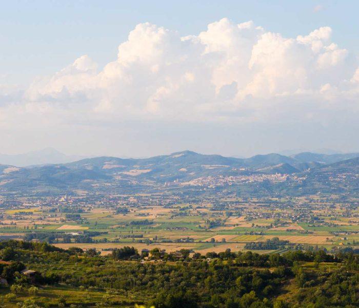 Foto Panoramiche IMG (9)